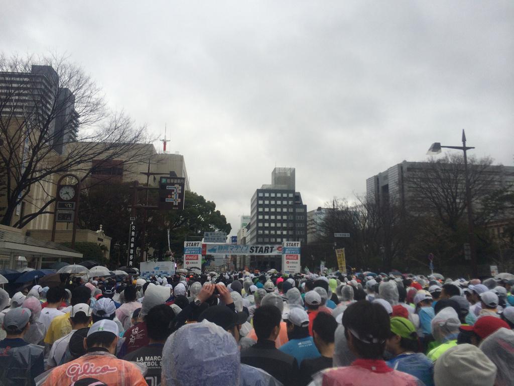 静岡マラソン2014_01