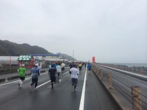 静岡マラソン2014_02