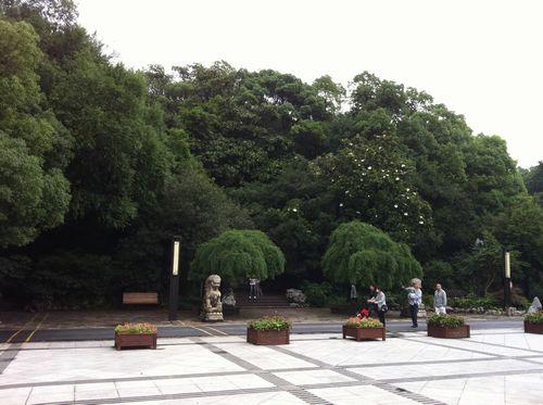 20110619_長風公園_森.jpg