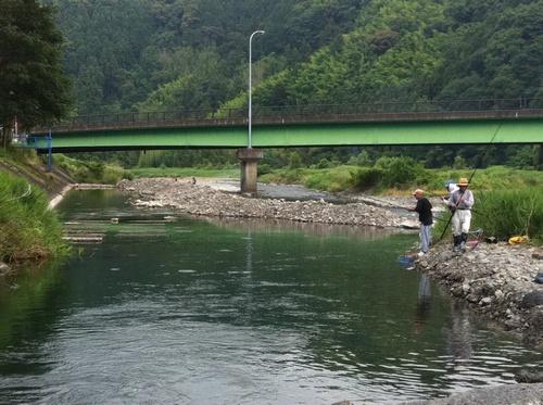 寺島河川敷公園 鮎1