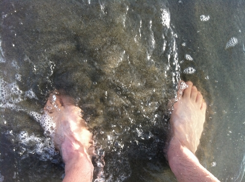 遠州灘の透明度