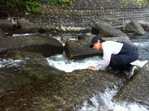 寺島河川敷公園 鰻2